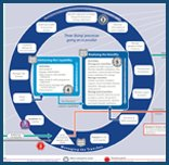 MSP® Process Map